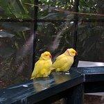 Photo de Kula Eco Park