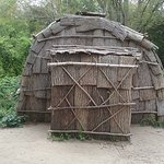 "an ""indians"" home"