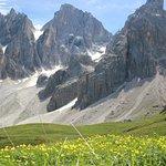 Panorama da Baita Segantini 2200 m