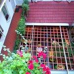 CameraZOOM-20160720203048190_large.jpg
