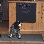 ภาพถ่ายของ At Cwm Ivy Cafe & Crafts