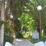 The Orangers Beach Resort & Bungalows Foto
