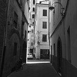 Photo de Lucca in Villa San Marco