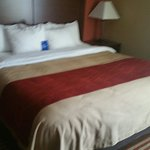 Photo de Comfort Inn & Suites Eastgate
