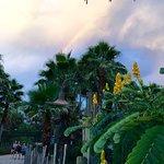 Photo de Tampa's Lowry Park Zoo