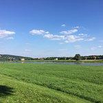 Elbufer, nahe Dresden Neustadt