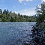 Foto di Copper River Princess Wilderness Lodge