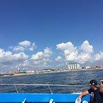 Sea Rocket Foto