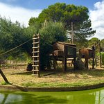 Photo de Parc Zoologique de Frejus