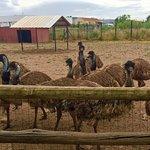 Photo de Parc Zoologique de Frejus