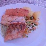 Cod, Salmon and Zander