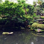 View from within Japanese garden and Koi pond area of hotel property.