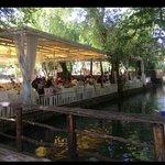 صورة فوتوغرافية لـ Al Midyaf Restaurant