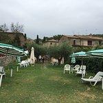 Photo de Hotel Da Sauro