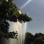 Photo de Botanical Garden (Botaniska Tradgarden)