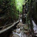 Flume Gorge Foto
