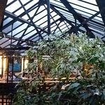 Lumière et végétation inondant le patio...
