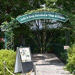 Jardin de Monet Marmottan au Village de Kitagawa