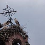 Hostellerie du Chateau Foto