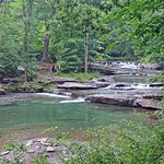 The Millstream Without Bathers