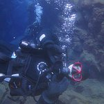 Dive.Is - Day Tours Foto