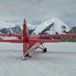 Foto di Talkeetna Air Taxi
