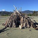 Tahunanui Back Beach hut
