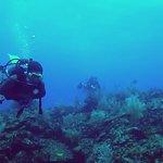 Bucaneros Del Caribe Foto