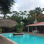 Pool - Hotel La Colonia Image