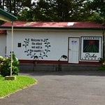 Doka Estate Coffee Tour Foto