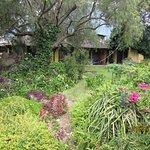Foto tomada desde el jardín hacia las habitaciones