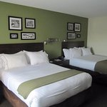 Foto de Holiday Inn Express & Suites Rogers