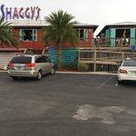 Shaggy's