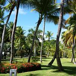Foto di Bavaro Princess All Suites Resort, Spa & Casino