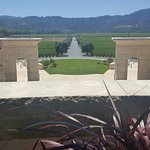 Foto di Opus One Winery