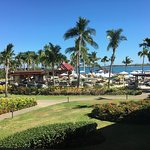 Waitui beach club