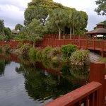 Park Shore Resort Foto