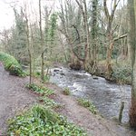 Lower section from mill dam to Rivelin Valley Rd.