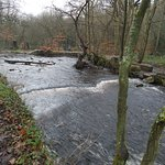 Curved weir and site of old mill pond to right
