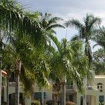 Foto de Palms at Wailea