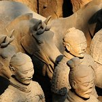 Photo of The Museum of Qin Terra-cotta Warriors and Horses