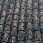 one of the rooms had a view of this beautiful tiled roof