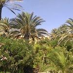 Photo de Hotel El Ksar