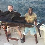 one of three sail fish