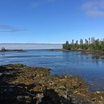 Foto de Reef Point Oceanfront B&B