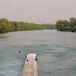 Ropar Wetland (Ropar Lake)