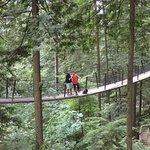 Capilano Suspension Bridge und Park Foto