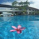 Photo of Nongsa Point Marina & Resort