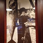 fish caught by rod and line by this wonderful gal in late 1800's off Catalina ~