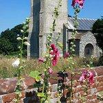 Hunworth Hollyhocks and Church